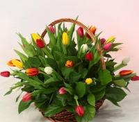 Цветочные корзины 95