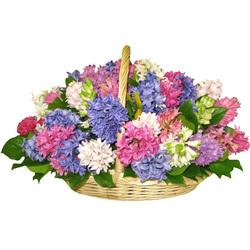 Цветочные корзины 64