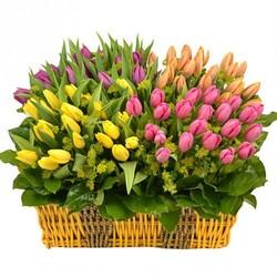 закажи букет свежих цветов....и получи постоянную скидку -35% .....на все покупки.....( скидка бессрочна)